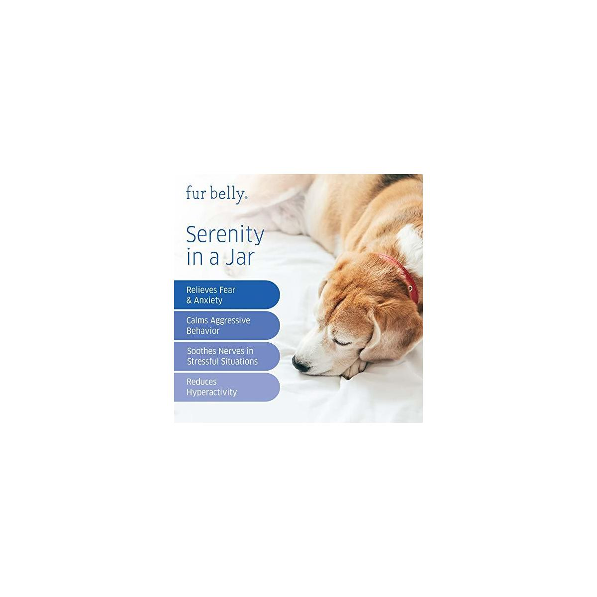 Calming Treats for Dogs - Natural Dog Anxiety Relief - Dog Calming Treats - Separation, Stress, Barking - Organic Hemp Dog Treats - 120 Calming Chews for Dogs - Made in USA